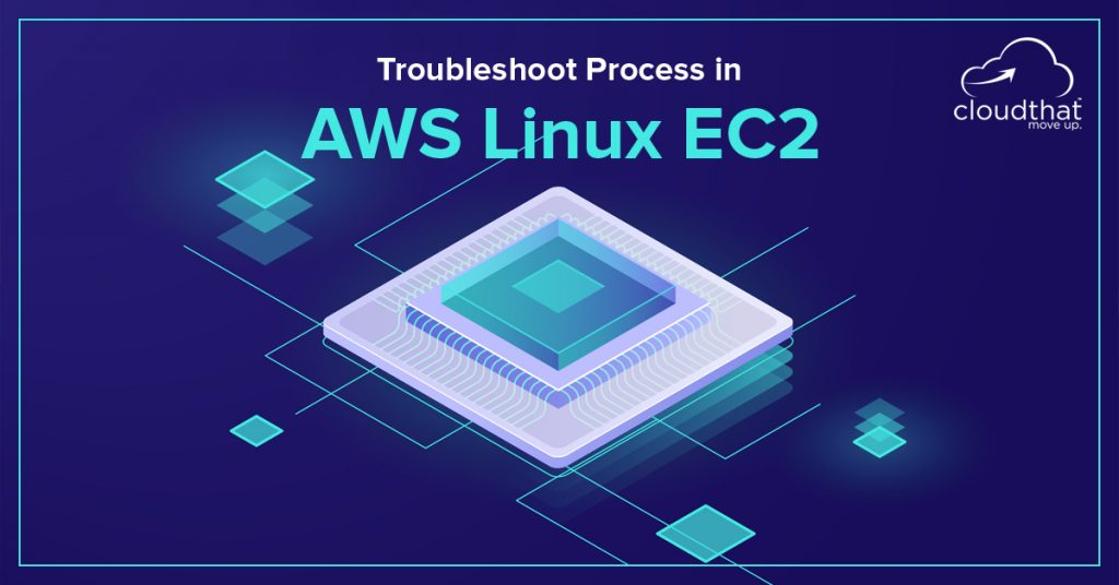 Troubleshoot Process in AWS Linux EC2